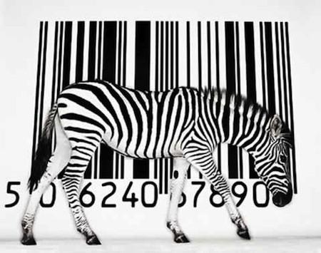zebra_codiceabarre3.jpg