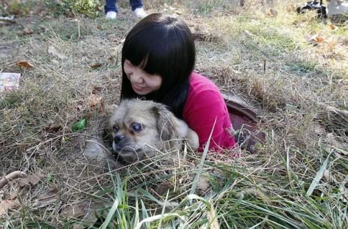 notizie animali, notizie divertenti, notizie strane, notizie commoventi, cani ciechi, cani non vedenti, cane intrappolato, cane dentro tombino