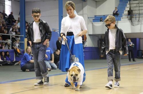 bulldog_concorso3.jpg