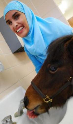 pony_guida4.jpg