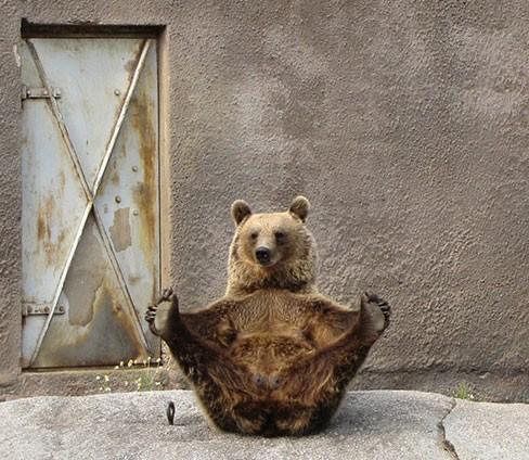 orsa_yoga1.jpg