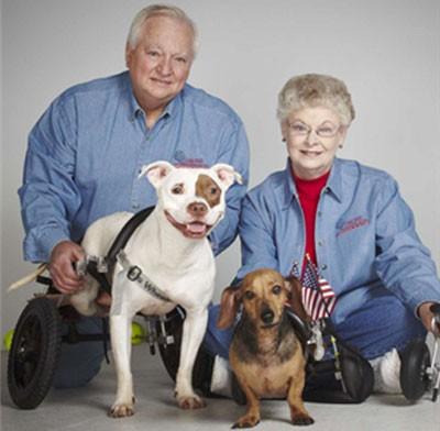 notizie animali, notizie divertenti, notizie strane, notizie commoventi,cani, cani disabili, canisulla sedia a rotelle, therapy dog, persone disabili