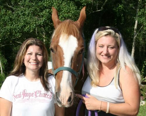 notizie animali,notizie commoventi,notizie divertenti,notizie strane,cavalli, animali rapiti,cavalli ritrovati,cavalli rubati,Stolen Horse International