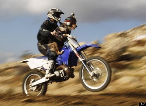 cane_motocross3.jpg