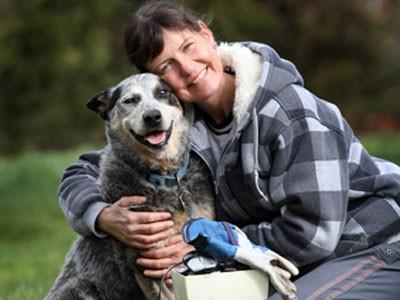 notizie animali, notizie divertenti, notizie strane, notizie commoventi, cani, Australian Cattle Dog, magneti, calamite, ghiaia, operazioni chirurgiche a cani