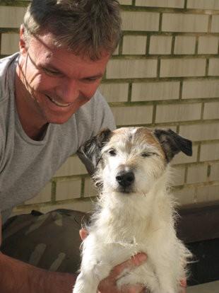 notizie animali, notizie divertenti, notizie strane, notizie commoventi, cani, Jack Russell, cani operati