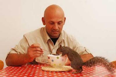notizie animali, notizie divertenti, notizie strane, notizie commoventi, scoiattoli, corn flakes, fiocchi di mais, arachidi, scoiattolo salvato