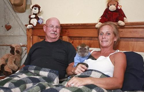 notizie animali, notizie divertenti, notizie strane, notizie commoventi, scimmie domestiche, macachi