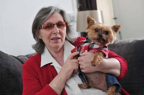 Yorkshire,cane salva padrona,cani,dispositivi salvavita,notizie animali,notizie commoventi,notizie divertenti,notizie strane
