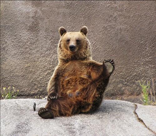 orsa_yoga3.jpg