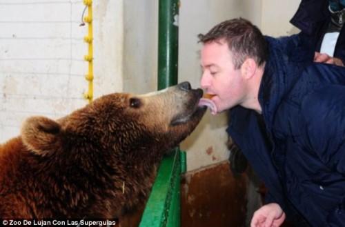 notizie animali, notizie divertenti, notizie strane, notizie commoventi, zoo, animali feroci, grandi felini, elefanti, orsi