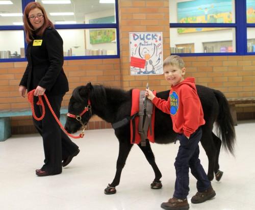 notizie animali, notizie divertenti, notizie strane, notizie commoventi, pony, pet therapy, atassia telagectasia, mini pony