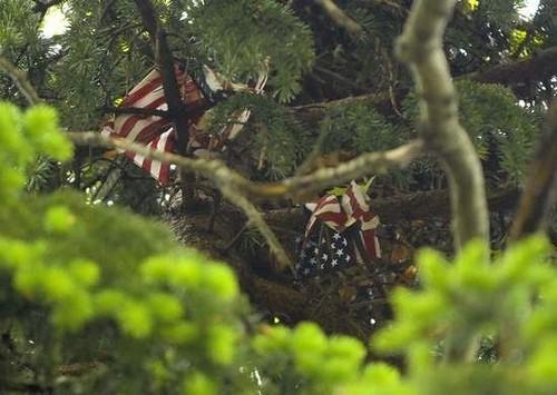 scoiattolo_bandiere1.jpg