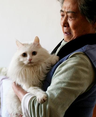 gatto_parlante.jpg
