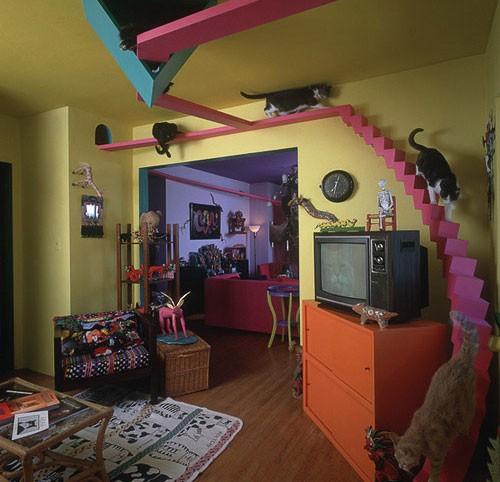 casa_gatti1.jpg
